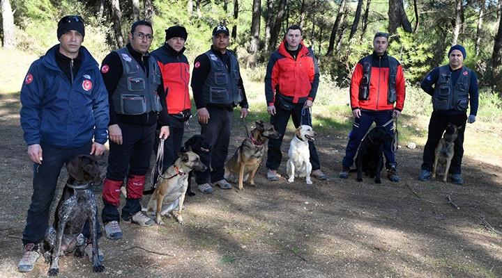 İtfaiyenin yedi köpeği hayat kurtarıyor